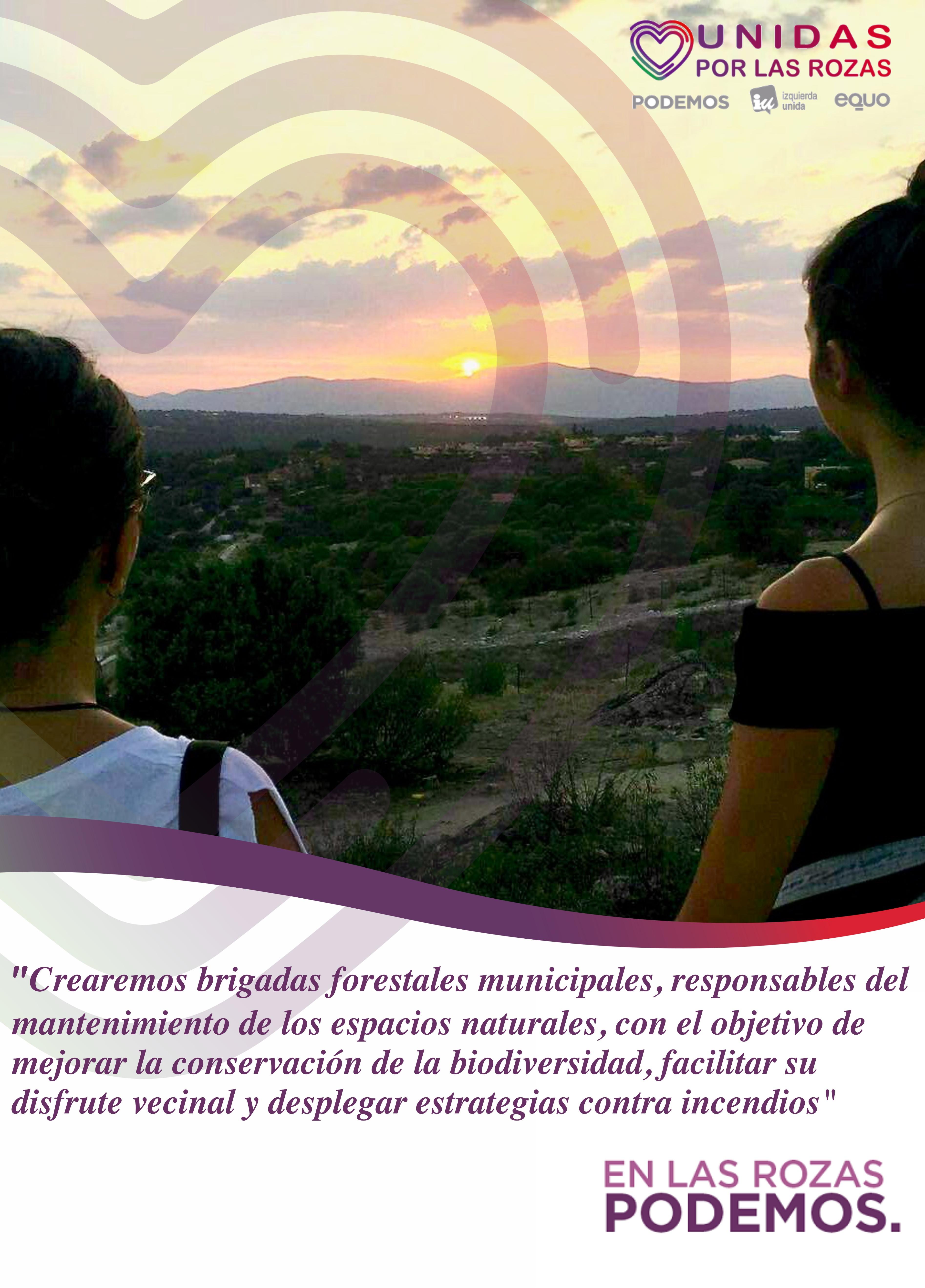 unidas_por_las_rozas_programa_patrimonio_mediambiente